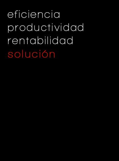 Productividad_ConsultoriaNTIC
